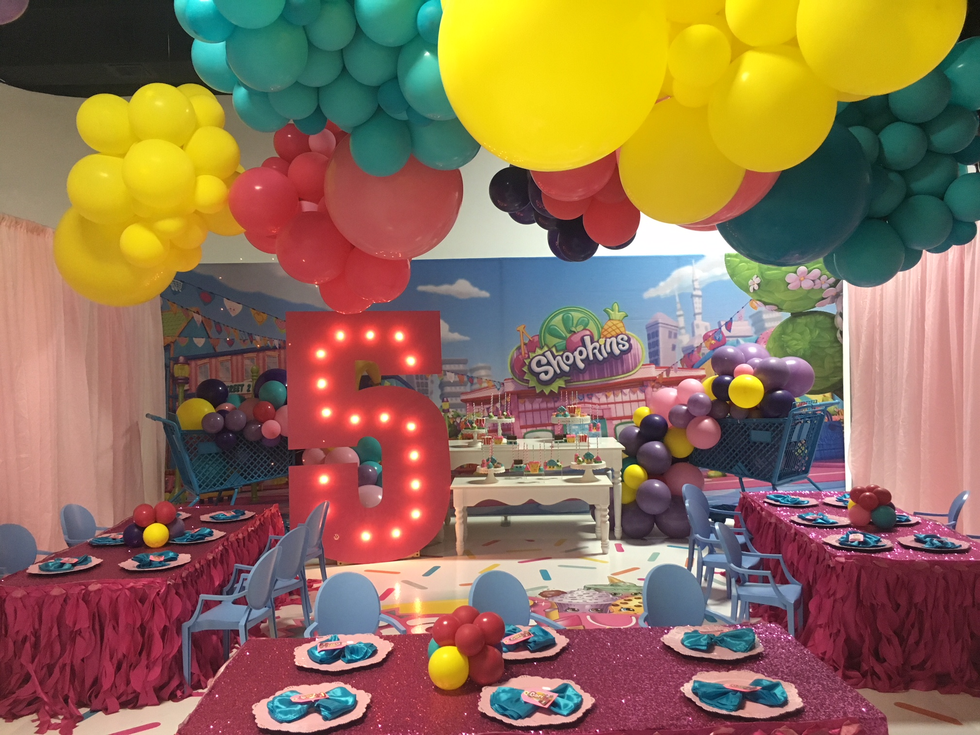Shopkins Theme Birthday Celebration